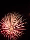 Explosão do fogo de artifício Imagens de Stock