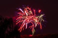 Explosões alaranjadas roxas vermelhas da celebração dos fogos-de-artifício do fogo de artifício Fotos de Stock