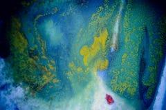 Explosões da pintura colorido Imagem de Stock