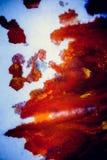 Explosões da pintura colorido Foto de Stock