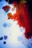 Explosões da pintura colorido Imagens de Stock