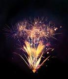 Explosões dos fogos-de-artifício no fundo preto Fotos de Stock Royalty Free