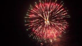 Explosión asombrosa de los fuegos artificiales en el cielo nocturno Cámara lenta 3840x2160 almacen de metraje de vídeo