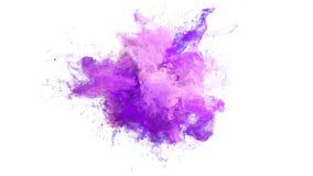 Explosión de color rosada púrpura - mate alfa del humo de las partículas flúidas coloridas de la explosión ilustración del vector