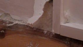 Explosión de la pared con el enfoque del molde hacia fuera metrajes