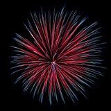 Explosión de los fuegos artificiales del crisantemo Imágenes de archivo libres de regalías