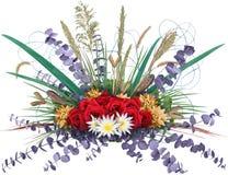 Explosión floral foto de archivo