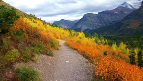 Explosie van Autumn Colors in Gletsjer royalty-vrije stock foto
