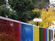 Explosie van kleuren in de herfst stock fotografie