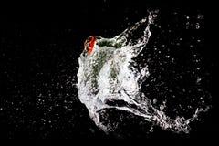 Explosion de ballon d'eau Images libres de droits
