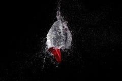 Explosion de ballon d'eau Photo stock