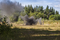 Explosion in forest Stock Photo