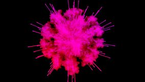 Firework of paint, explosion of colorful powder isolated on black background. 3d animation as a colorful abstract. Explosion of paint powder in slow motion vector illustration