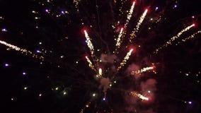 Explosiones de los fuegos artificiales, saludo colorido hermoso en el cielo de la noche del fondo, cámara lenta almacen de metraje de vídeo