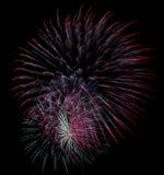 Explosions de feu d'artifice d'isolement sur le noir Image stock