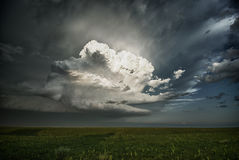Explosive Growth of a Storm. A cumulus cloud explosively grows over the central plains of Kansas during the spring. This young storm grew to produce a tornado Royalty Free Stock Image