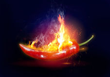 Explosive Hot Chili Stock Image