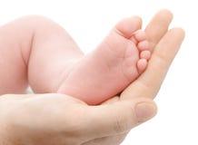 Explotación agrícola de la madre su pie recién nacido imágenes de archivo libres de regalías