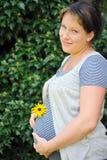 Explotación agrícola de la mujer embarazada su vientre Fotografía de archivo