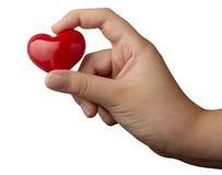 Explotación agrícola romántica de la mano del amor de la dimensión de una variable del corazón Foto de archivo libre de regalías