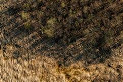 Explotación minera de la turba Fotografía de archivo