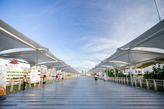 Expo 2010 Shanghai-Elevated Walkway Stock Images