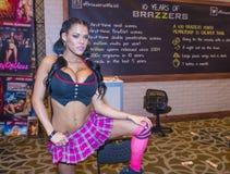 Expo adulta del entretenimiento de los AVN Foto de archivo