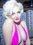 Expo adulta do entretenimento dos AVN Foto de Stock Royalty Free