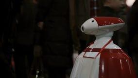 Expo de robotique 5 novembre 2016 de la RUSSIE, MOSCOU Garçon parlant avec le robot autonome de humanoïde, machine regardant à l' banque de vidéos