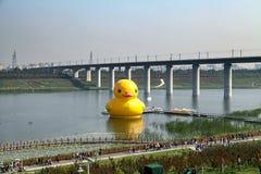 A 9a expo internacional do jardim de China (Pequim) Imagem de Stock