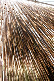 EXPO MILANO 2015 Bamboo Royalty Free Stock Photography