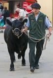 Expo Prado Royalty Free Stock Images