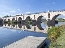 Exponerad bro över Douroen Royaltyfria Foton