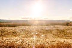 Exponerar den varma solen för våren fältet Arkivfoto