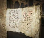 Exponering av en medeltida codex Royaltyfria Bilder