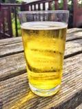 Exponeringsglas av äppeljuice Royaltyfri Foto