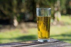 Exponeringsglas av äppeljuice på tabellen Fotografering för Bildbyråer