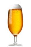 Exponeringsglas av öl Arkivfoto