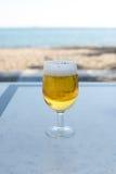 Exponeringsglas av öl Fotografering för Bildbyråer