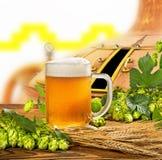 Exponeringsglas av öl med flygturer och korn royaltyfri bild
