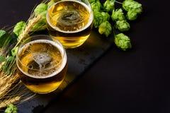 Exponeringsglas av öl med gröna flygturer och veteöron på mörk träbakgrund 1 livstid fortfarande kopiera avstånd arkivbild