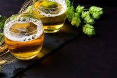 Exponeringsglas av öl med gröna flygturer och veteöron på mörk träbakgrund 1 livstid fortfarande kopiera avstånd royaltyfri bild