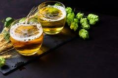 Exponeringsglas av öl med gröna flygturer och veteöron på mörk träbakgrund 1 livstid fortfarande kopiera avstånd royaltyfri foto