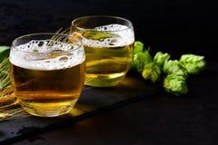 Exponeringsglas av öl med gröna flygturer och veteöron på mörk träbakgrund 1 livstid fortfarande kopiera avstånd arkivfoton
