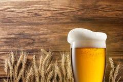 Exponeringsglas av öl med vete på trä Royaltyfri Fotografi