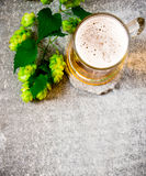 Exponeringsglas av öl- och gräsplanflygturer arkivbild