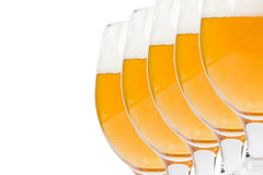 Exponeringsglas av öl på en vit bakgrund Arkivbild