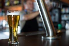 Exponeringsglas av öl på stångräknare mot bakgrund av den vänliga barten royaltyfri fotografi