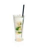 Exponeringsglas av alkoholdrycken med limefrukter och is Arkivfoto