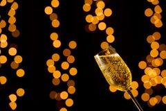 Exponeringsglas av champagne royaltyfria bilder